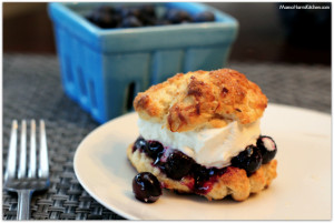 Blueberry Coconut Shortcake with Lemon Infused Whipped Cream #LittleChanges #IC #ad - Mama Harris' Kitchen