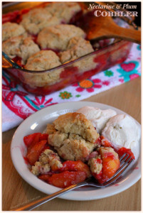 Nectarine & Plum Cobbler #PANFan #IC (ad) | Mama Harris' Kitchen